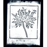 Intaglio Flower 012 (of 18)