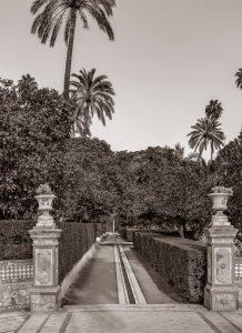 Alcazar Garden 2 (of 8)