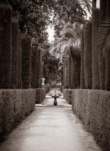 Alcazar Garden 4 (of 8)