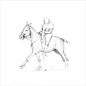 Horse 1 (of 6)