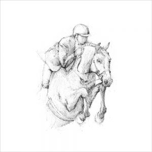 Horse 3 (of 6)