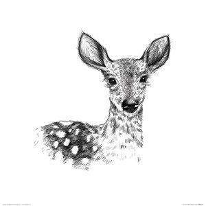 Deer~ 350 x 350mm