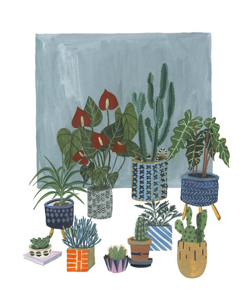 A Portrait of Plants I