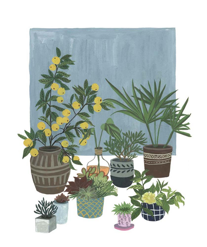 A Portrait of Plants II