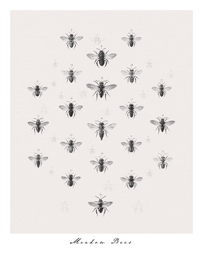 Meadow Bees - 400 x 500, 560 x 710, 800 x 1000 mm