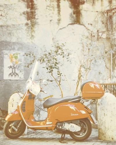 Summer Escape - Bike - 400 x 500, 560 x 710, 800 x 1000 mm
