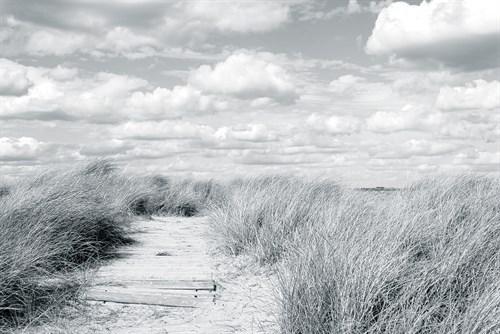 Dune Clouds IV - 750 x 500, 900 x 600, 1200 x 800, 1800 x 1200 mm