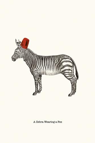 Zebra In A Fez - 500 x 750, 600 x 900, 800 x 1200, 1200 x 1800 mm