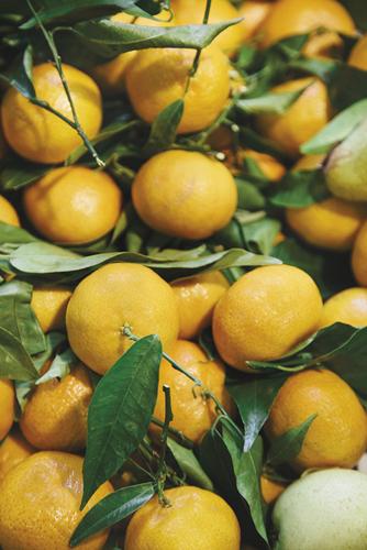 Tumbled Oranges - 500 x 750, 600 x 900,  800 x 1200, 1200 x 1800 mm